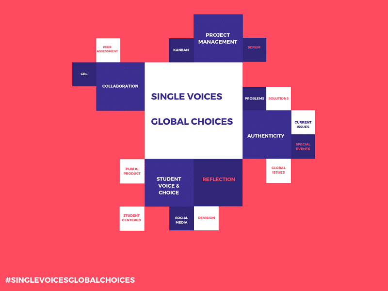 Single Voices. Global Choices - Project
